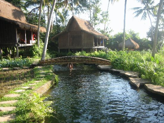 Bambu Indah's natural pool, staying true to its ecologically-perfect tranquil setting.  Photo: Eduardo MacLean