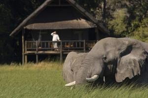Eagle Island Camp-Okavango Delta-BOTSWANA-eagle-island-camp_2681_01