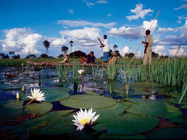 Eagle Island Camp-Okavango Delta-BOTSWANA-okavango2