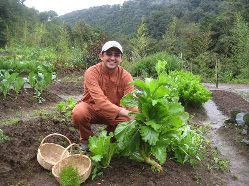 El Silencio-COSTA RICA-04silencio-garden