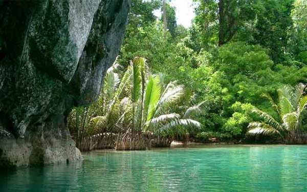 Puerto Princesa Subteranean River National Park_PHIL_puerto-princesa-subterranean-river-national-park