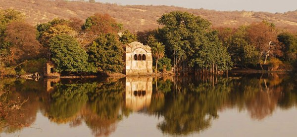 She Bagh-Ranthambhore-INDIA-ranth1