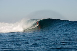 Scar reef, Sumbawa Island. Photo: flickr member justinsebastian