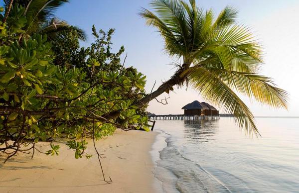 The Diva-MALDIVES-12-div_beach10