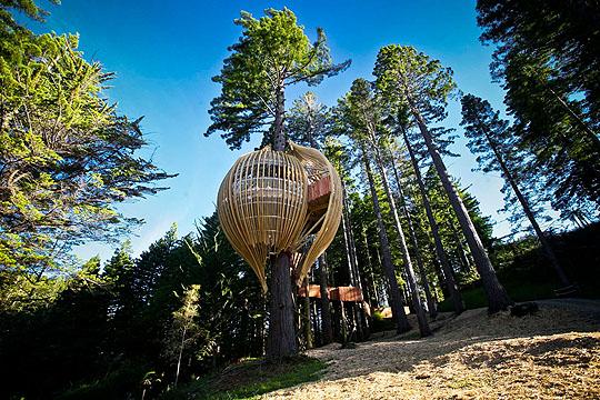 treehouse_restaurant1