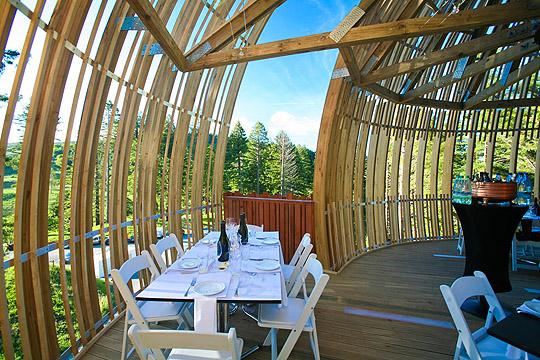 treehouse_restaurant3