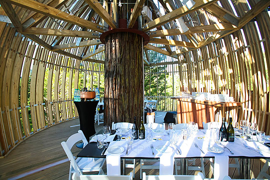 treehouse_restaurant4