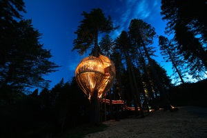 treehouse_restaurant5