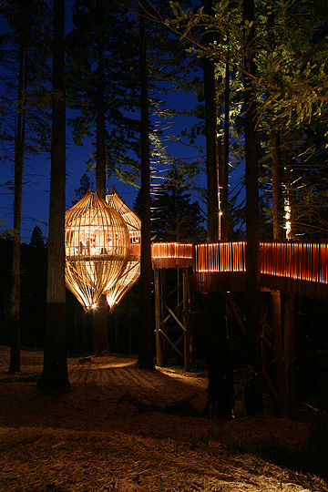 treehouse_restaurant7