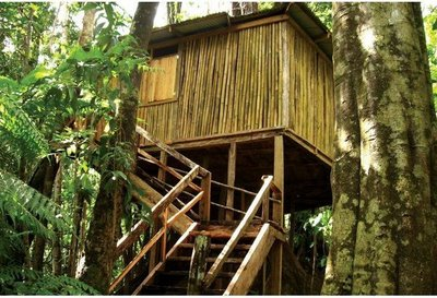 13 Rosalie Forest Eco Lodge-DOMINICA