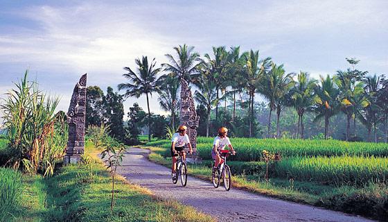 Bali Mt Biking-BBLI-bali-biking