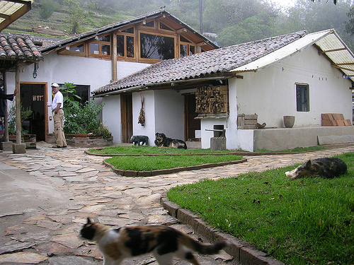 Black Sheep Inn-Eco Lodge-ECUADOR-3