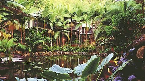 Daintree Eco Lodge-QLD-OZ-6