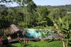 Hamadryade Eco Lodge-Ecuador-23