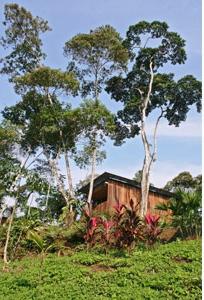 Hamadryade Eco Lodge-ECUADOR-Cabin3