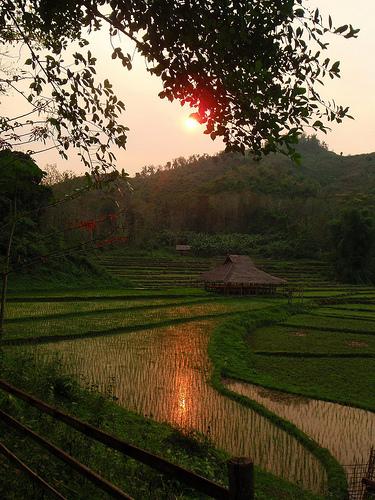 Kamu Lodge-Luang Prabang-LAOS-6