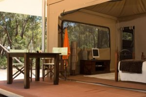 Karijini Eco Retreat-OZ-Deluxe Eco Tents-7