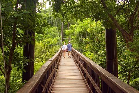 Morgan's Rock-NICARAGUA-Bridge 2