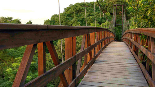 Morgan's Rock-NICARAGUA-Bridge
