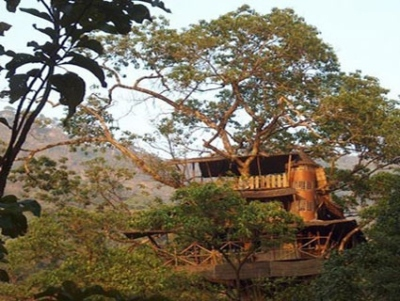 Tree House-Green Magic Nature Resort-Kerala-INDIA 2