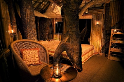 Tree House-Wild Canopy Reserve-Tamil Nadu-INDIA 1