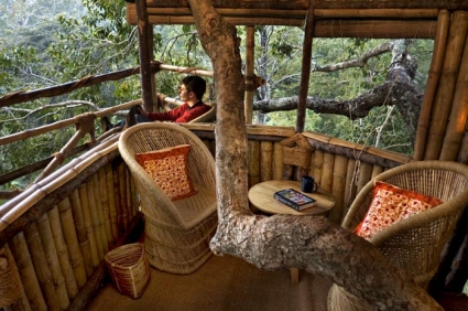 Tree House-Wild Canopy Reserve-Tamil Nadu-INDIA 3