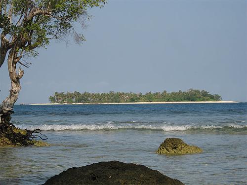 umang-44-oar-pulau