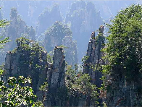Zhangjiajie Forest Geo-Park-CHINA