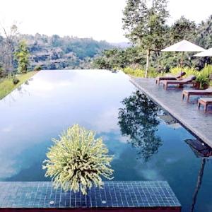 Alila Ubud-BALI Pool