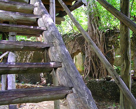 Chole Mjini Lodge-Mafia Island-TANZANIA 21