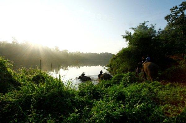 Elephant Camp Chiang Mai-Mahout Training Course-elephants' glorious bathing waters 1