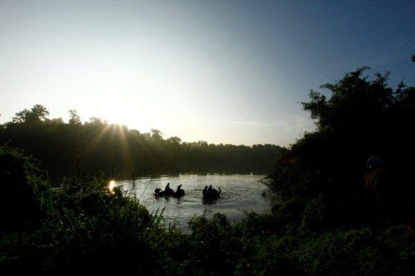 Elephant Camp Chiang Mai-Mahout Training Course-elephants' glorious bathing waters 2
