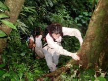 Orang Utan Volunteer-Ivona at work in the jungle (Photo Chris Bannister) 2