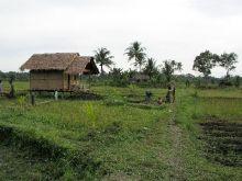 Orang Utan Volunteer-Volunteer accommodation (Photo Ivona Foitova)