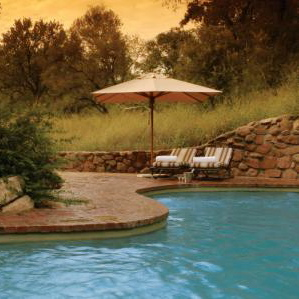 Sabi Sabi Bush Lodge-ZA Pool 1