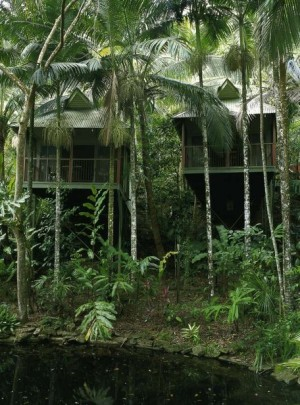 Treetop Retreats-Daintree -QLD-OZ