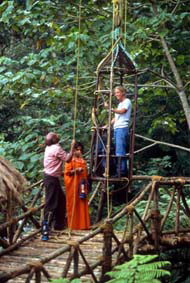 Treetop Retreats Green Magic-Cane Lift 2