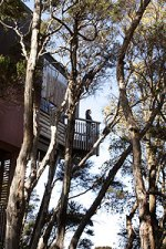 Treetop Retreats-Hapuku Lodge-Kaikoura-NZ 5