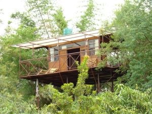 Treetop Retreats-Safari Land-Tamil Nadu-INDIA 1