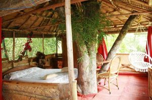 Treetop Retreats-Safari Land-Tamil Nadu-INDIA 3