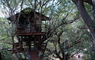 Treetop Retreats-Sanya Nanshan-Sanya Island-CHINA