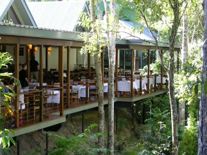 Treetop Retreats-Silky Oaks-QLD-OZ